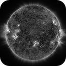 The Sun (DSO),                                Oliver Czernetz