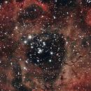 Rosette Nebula,  Caldwell 49,                                nhw512