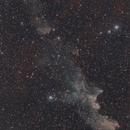 Witch Head Nebula IC 2118,                                Nico Carver