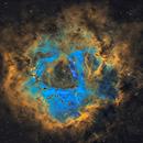 NGC 2237,                                Jan Róg