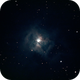 Iris Nebula - NGC 7023,                                Jason Doyle
