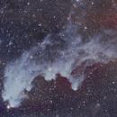 IC 2118 Witch Head Nebula RASA Ha + OSC,                                Brandon Tackett