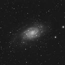 "NGC 2403 - C11 - HyperStar - Asi 183mm Pro - 160 x 30"",                                Alain-Bouchez"