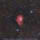 Sh 2-261 aka Lower's nebula,                                Okke_Dillen