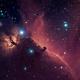 Horsehead Nebula,                                Derek Foster