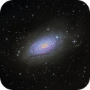 M63 The Sunflower Galaxy (NGC 5055),                                John Hayes