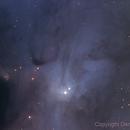 VdB 105 Rho Ophiuchi area,                                Dennis Moeller