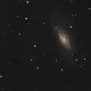 M106,                                Brian Ritchie