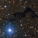 Barnard 174,                                Zoltán Bach