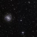 M83,                                Dan Watt