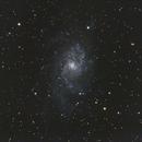 M33,                                Frank Lothar Unger