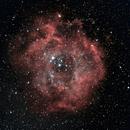 Rosette Nebula,                                Luxor