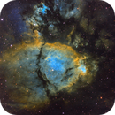 IC 1795:  A Colorful Fish Swimming Through Cassiopeia,                                John Hayes