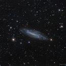 NGC 4236: A Caldwell Galaxy,                                Edoardo Luca Radi...