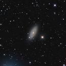 NGC 2841,                                Samuel