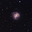 NGC5236 (M83),                                Huang Wei-Ming