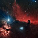 Horsehead Nebula,                                Dan Watt