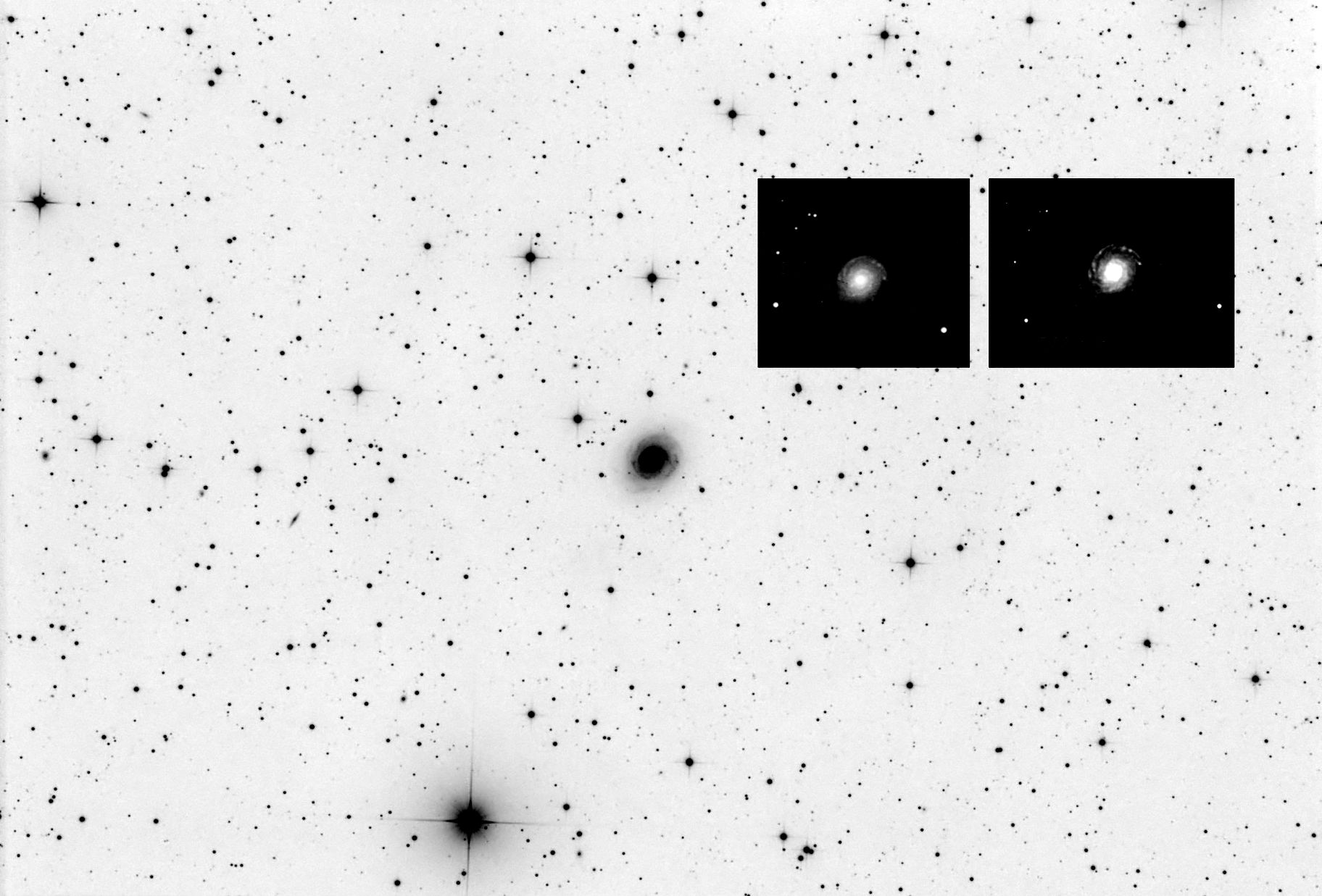 SN 2021do in NGC 3147,                                CCDMike