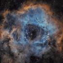 NGC 2238 THE ROSETTE NEBULA,                                Anthony Husson