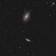 M81 - M82 Widefield,                                Nabucco