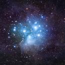 The Pleiades (M45),                                Will Czaja