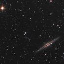 NGC 891 Edge-On Galaxy in Andromeda,                                Nightsky_NL