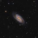 NGC2903,                                Andrei Ioda
