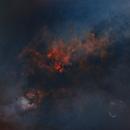 Cygnus (minus stars),                                drivingcat