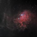 The Flaming Star Nebula, IC 405, SH 2-229, Caldwell 31,                                Steven Bellavia