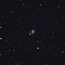 M51 wide field,                                Stefano Giardinelli