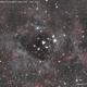 ROSETTE - NEBULA & CLUSTER (NGC 2238 - NGC 2244),                                Roberto Luiz Spen...