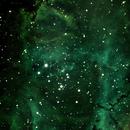 Rozette nebula, center,                                kskostik