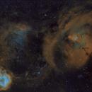 Christmas Tree Nebula, Rose Nebula Mosaic,                                YIJIA ZHANG