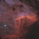 Pelican Nebula - NGC 5070,                                Dan Vranic