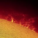 Sun H Alpha Proms on  2021-06-13 UTC 08:10,                                Ruediger
