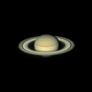 Saturn from Florida,                                Frank Kane