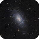 NGC2403,                                Thomas Richter