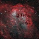 IC410 Tadpole Nebula,                                Valerio Avitabile