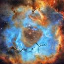 NGC2237 HST,                                Darek
