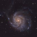 Messier 101,                                Chris Lasley