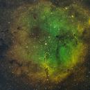IC 1396 Elephant Trunk,                                Oliver Quas