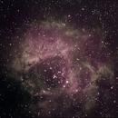 rosette nebula osc,                                Blue Moon Observa...