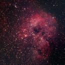 The Tadpole Nebula,                                Shannon Calvert
