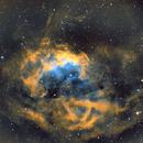 Sh2-261 Lower's Nebula,                                Seymore Stars