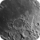 Pitatus. June 1st 2020,                                Wouter D'hoye