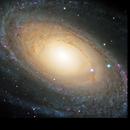 M81, Bode's Galaxy,                                Ruben Barbosa