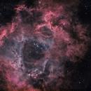 NGC 2244,                                Brian Maurer