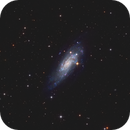 NGC 4559 - Koi Fish Galaxy - LRGB,                                Phil Brewer