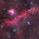 IC2177 - Seagull Nebula,                                Thierry Holer