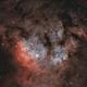 CED 214 / Sh2-171in Cepheus,                                pete_xl